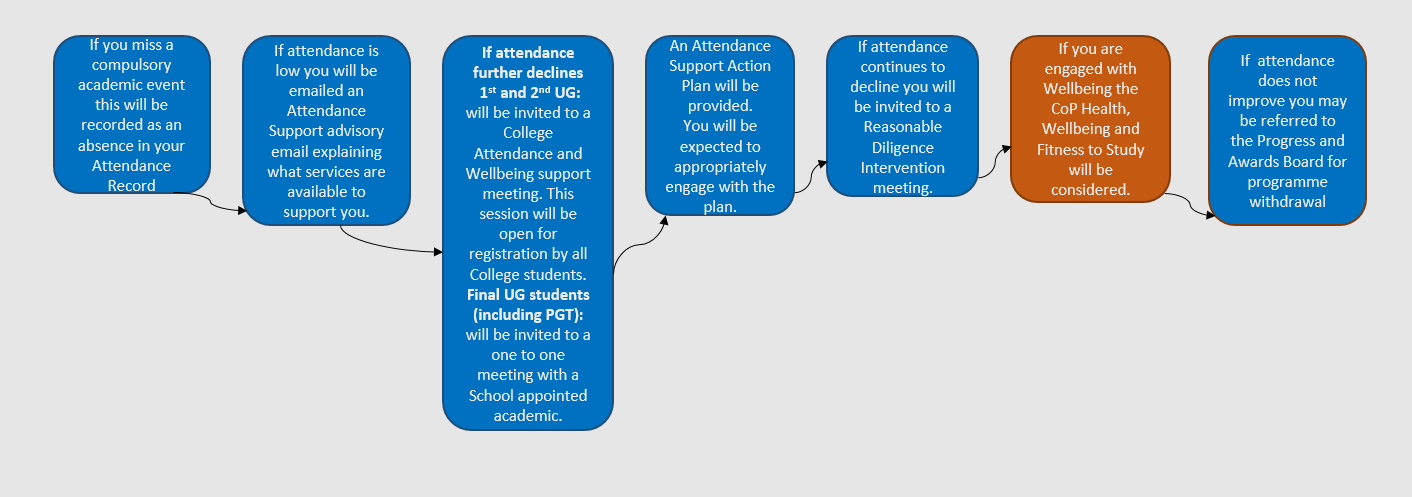A flow diagram explaining the Reasonable Diligence Process. This information is also summarised in the section titled 'What will happen to me if I do not attend?'