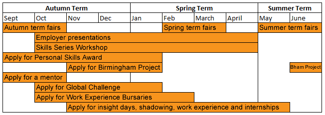 Careers timeline for first years (see text below for details)