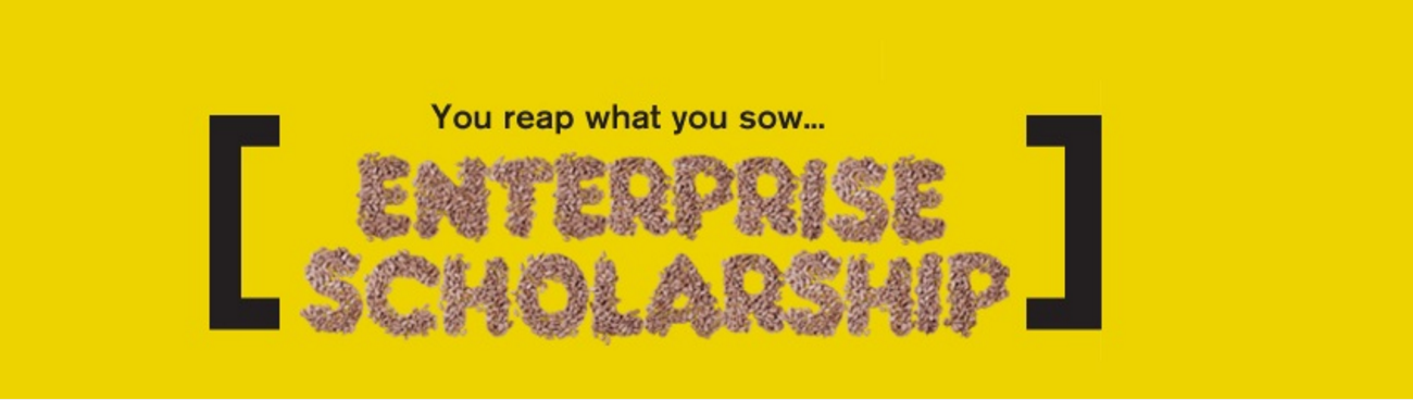 Enterprise Scholarship logo