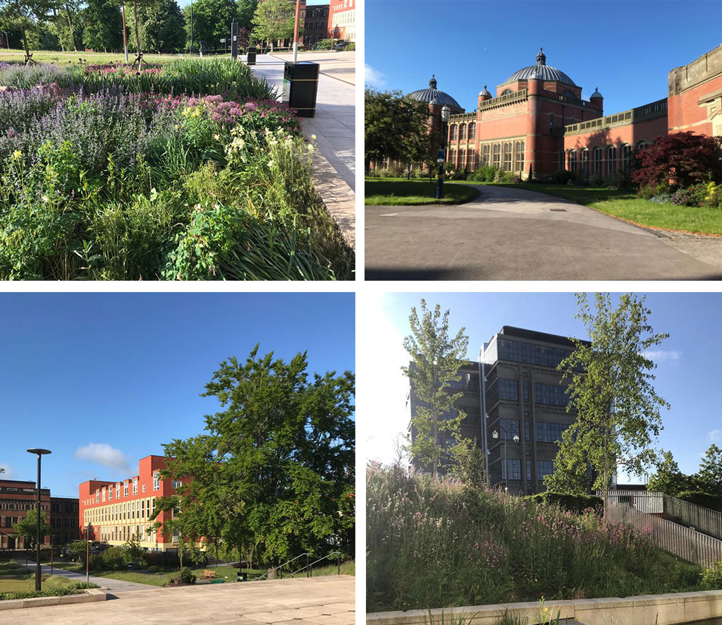 Top left photo, flower bed outside Staff House, Top right photo, Aston Webb, Bottom left photo, Staff House, bottom right photo, Muirhead tower