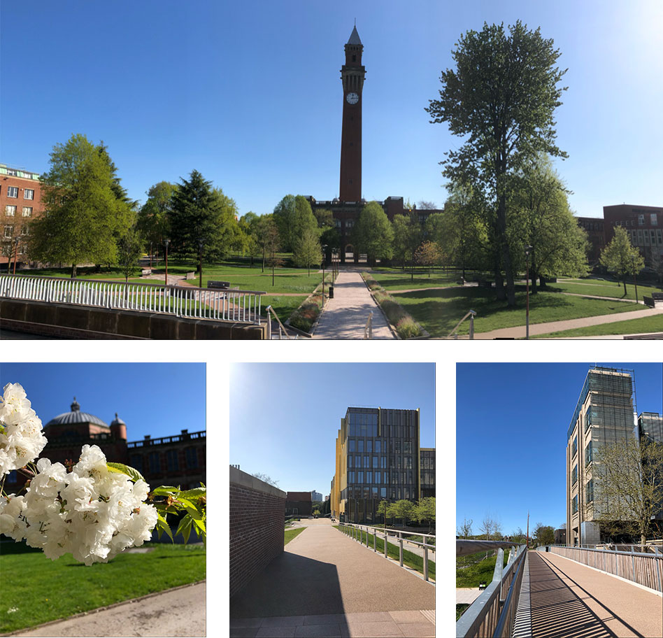 Photos top to right, Old Joe, Aston Webb behind some flowers, Library, Muirhead tower
