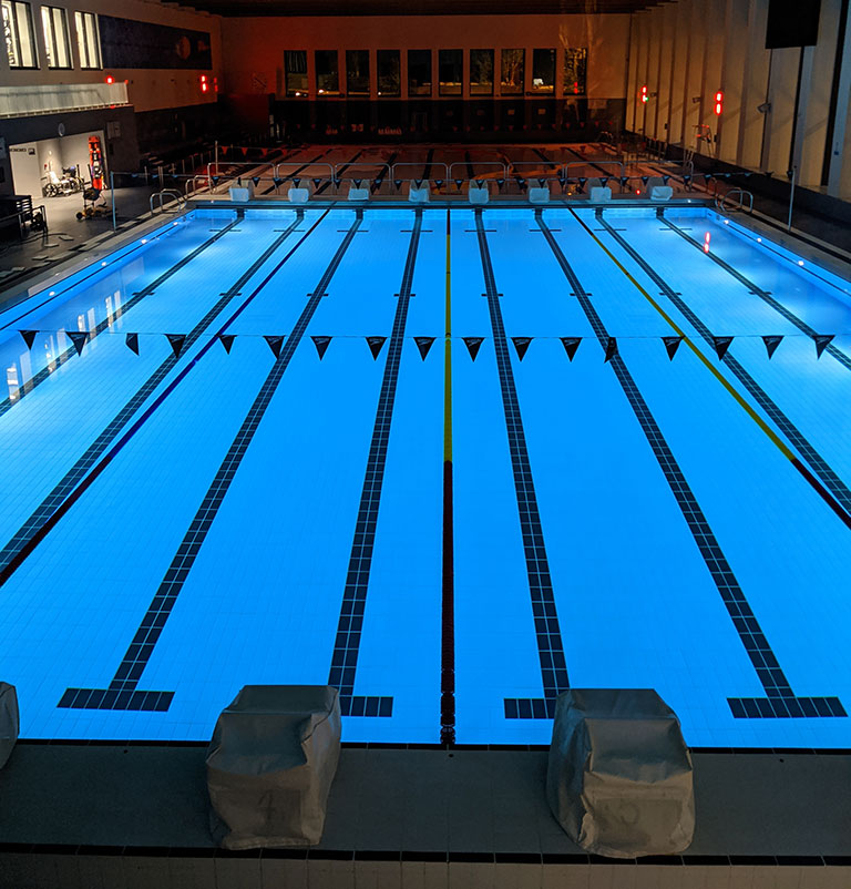 The swimming pool at sport and fitness
