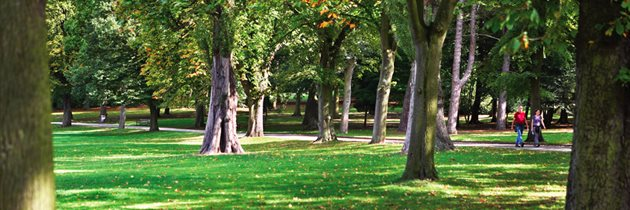 cannon-hill-park-trees