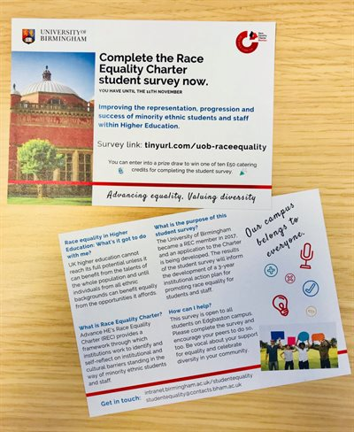 Race Equality Charter student survey marketing flyer